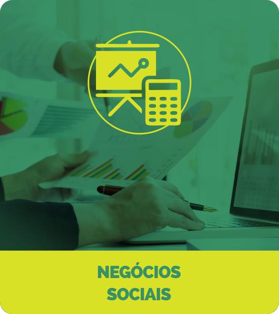 NEGÓCIOS SOCIAIS
